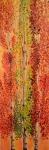 Columnar Aspens in Autumn Light